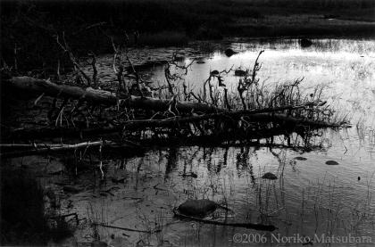 Western Brook, Newfoundland, fibre base print photograph by Japanese artist Noriko Matsubara, 2006.