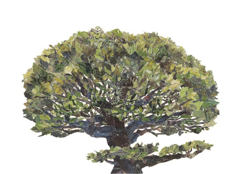 Tree. Chigirie. Hand-torn newspaper collage by Japanese artist Noriko Matsubara, inspired by the natural world-nature