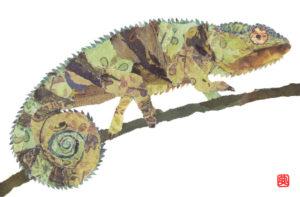 Chameleon Chigiri-e Print